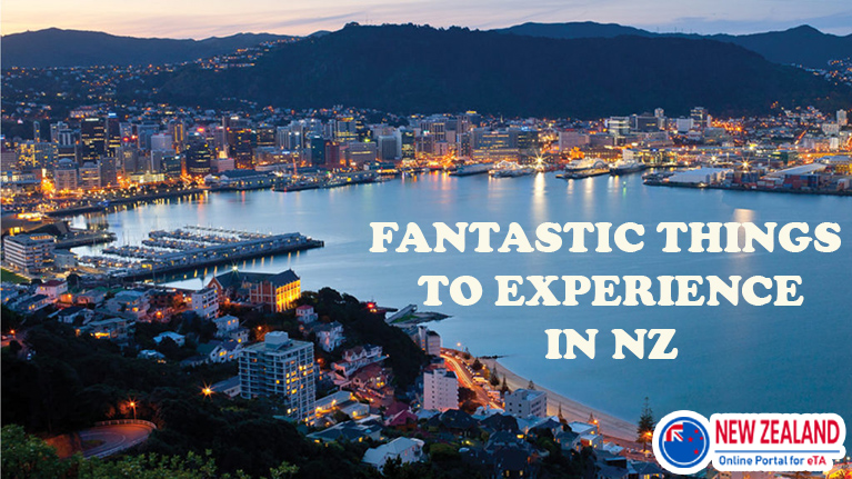 Fantastic things to experience in New Zealand
