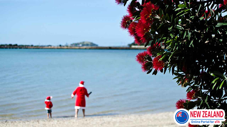 Christmas-in-New-Zealand