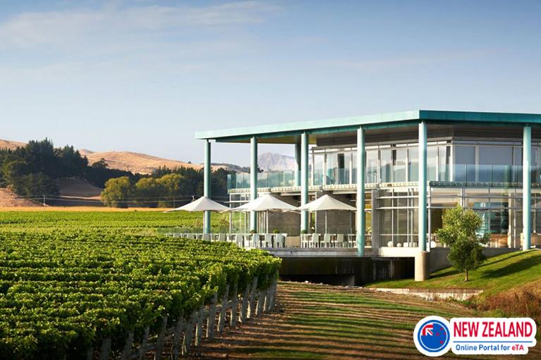 New-Zealand-winery-restaurant