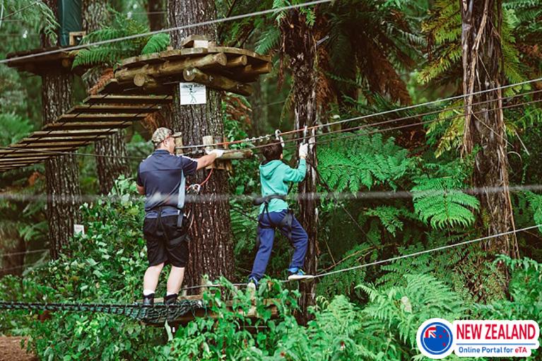 Adrenalin-Forest-New-Zealand